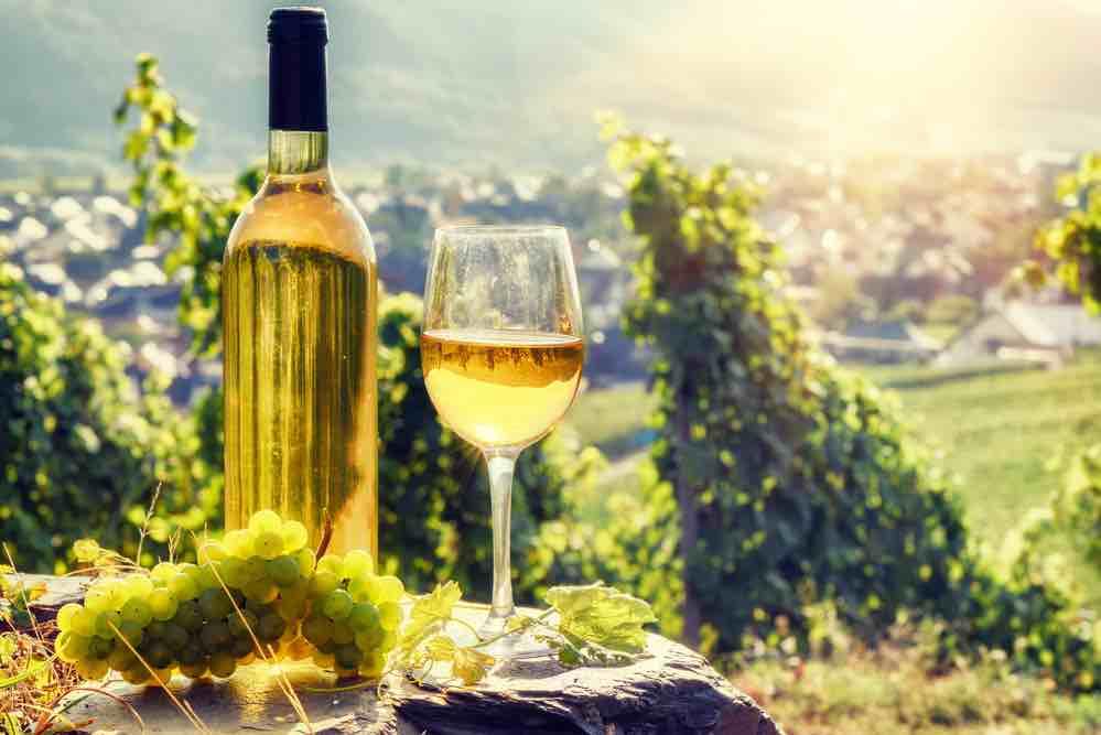 Wijn en vakantie langs de Moezel in Duitsland